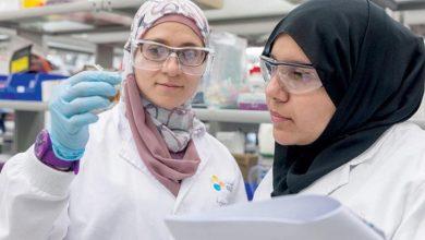 صورة الذكاء الصناعي لتحديد الجينات المسببة للسرطان