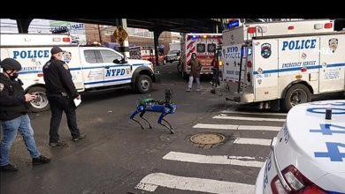 """صورة روبوت """"كلب"""" مطور بالذكاء الاصطناعي يساعد في تحقيقات الشرطة الأميركية"""