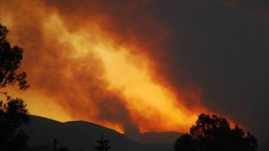 صورة باحثون يطورون خرائط بالذكاء الاصطناعي لمكافحة حرائق الغابات