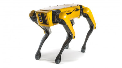 """صورة بالفيديو.. امرأة تتنزه برفقة """"كلب روبوت"""" ثمنه 75 ألف دولار"""