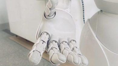 """صورة علماء يطورون """"أدمغة"""" صغيرة تمكن الروبوتات من الإحساس بالألم"""