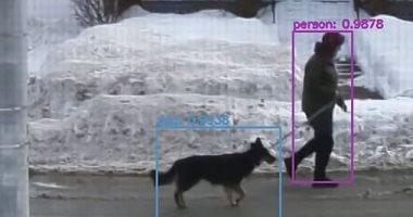 صورة يوتيوبر يدرب ذكاء اصطناعي على النظر من النافذة والكشف عن الكلاب