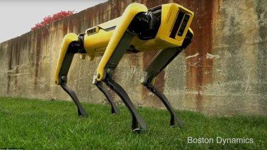 """صورة بالفيديو.. شرطة نيويورك تستبدل الكلاب البوليسية بـ """"كلب روبوت"""""""