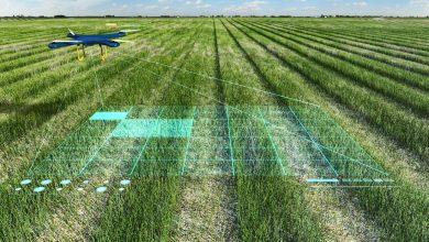 صورة الزراعة الذكية باتت حقيقة.. فماذا أعددنا لها