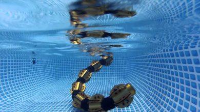 """صورة """"روبوت"""" على شكل ثعبان يمكنه الغوص في الأعماق"""
