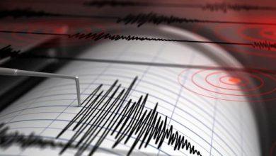 صورة هواة يهزّون عالم التنبؤ بالزلازل.. وتقنيات الذكاء الاصطناعي تقوم بدورها