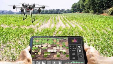 صورة شركة كندية ترفع كفاءة مبيدات الأعشاب بالذكاء الاصطناعي