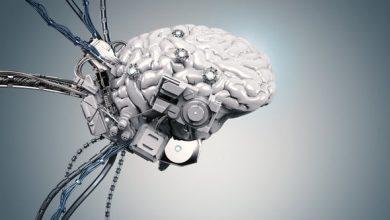 صورة علماء يطورون روبوتًا يجمع بين حاستي الرؤية واللمس لمحاكاة عمل الدماغ