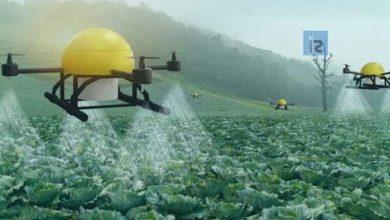 صورة لإنقاذ ملايين من الجوع.. الذكاء الاصطناعي والنانو تكنولوجي يغيران مستقبل الزراعة