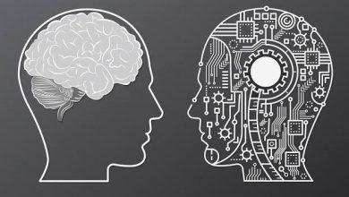 صورة هل يستطيع الذكاء الاصطناعي محاكاة العقل البشري؟.. 80 عاما في المختبر